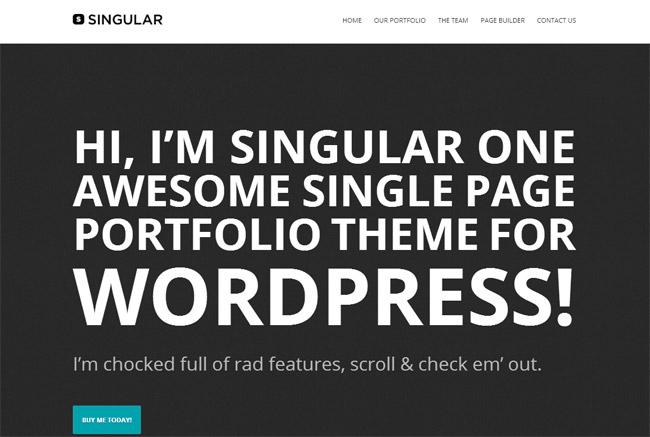 WP Singular WordPress Theme