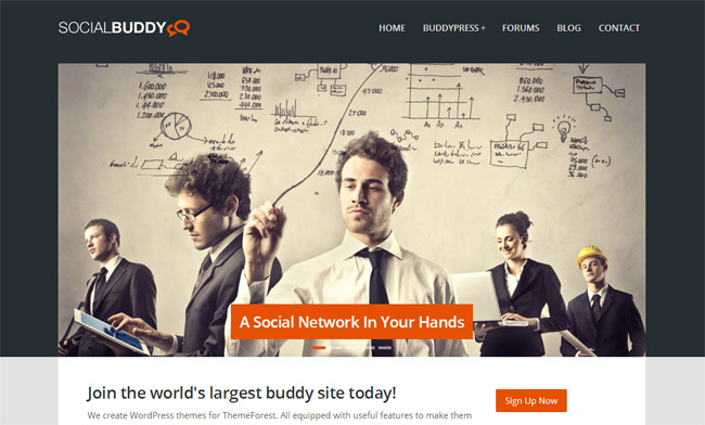 Social Buddy WordPress Theme