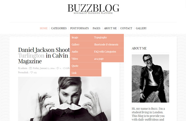 BuzzBlog WordPress Theme