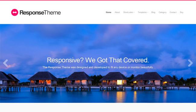 Responsive Theme WordPress Theme