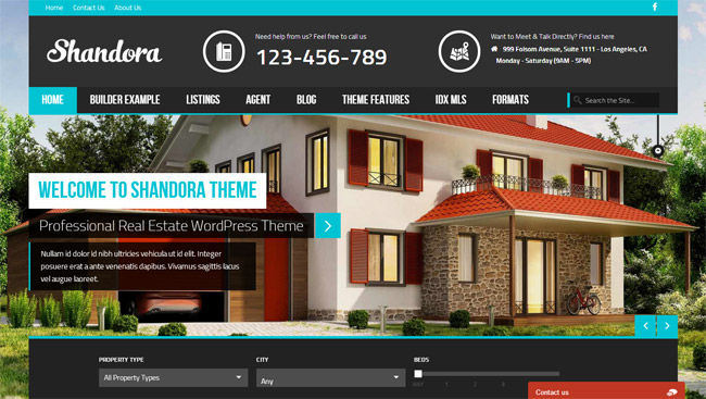 Shandora WordPress Theme