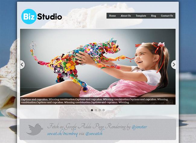 BizStudio Lite WordPress Theme