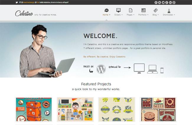 Celestino Free WordPress Theme