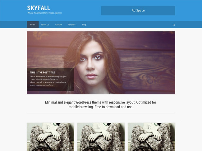 SkyFall WordPress Theme