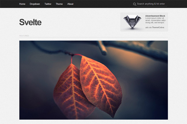 Svelte Free WordPress Theme