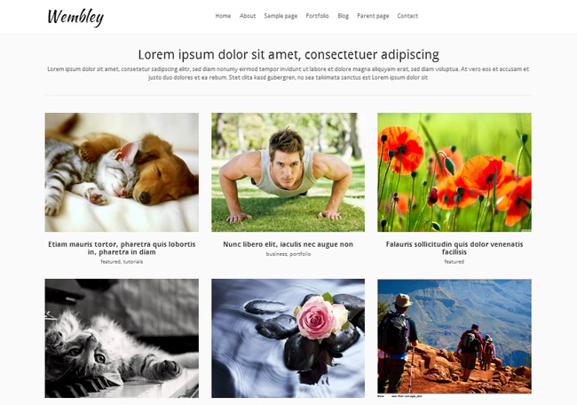 Wembley Free WordPress Theme