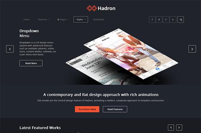 Hadron