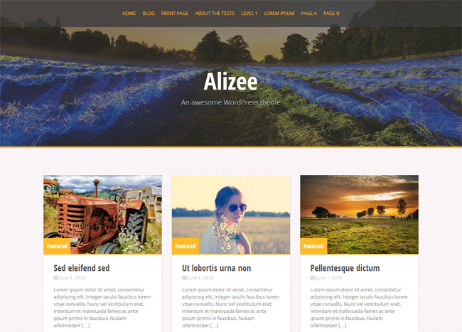Alizee Free WordPress Theme