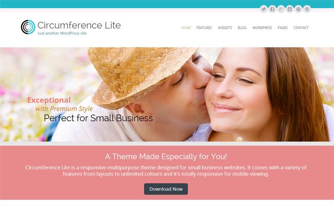 Circumference Free WordPress Theme