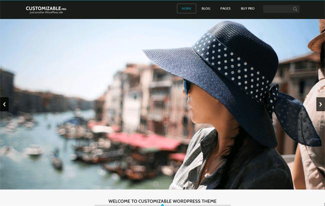 Customizable Free WordPress Theme