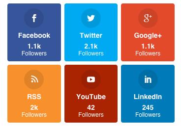 An Example of the Social Follow Widget