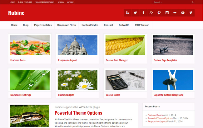 Rubine Free WordPress Theme