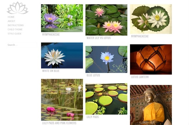 Water Lily Free WordPress Theme