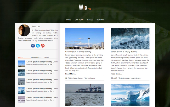 Wix Pro Free WordPress Theme