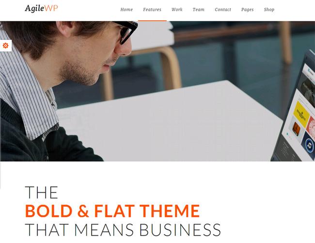 Agile Premium WordPress Theme