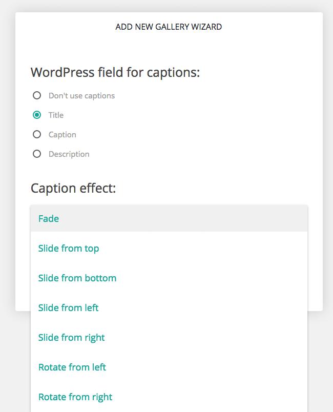 Caption Options