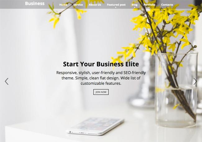 Business Elite Home Page Slider
