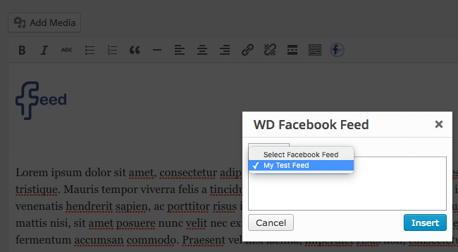 Facebook Feed WD Post Editor