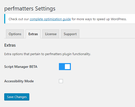Perfmatters Extras Settings