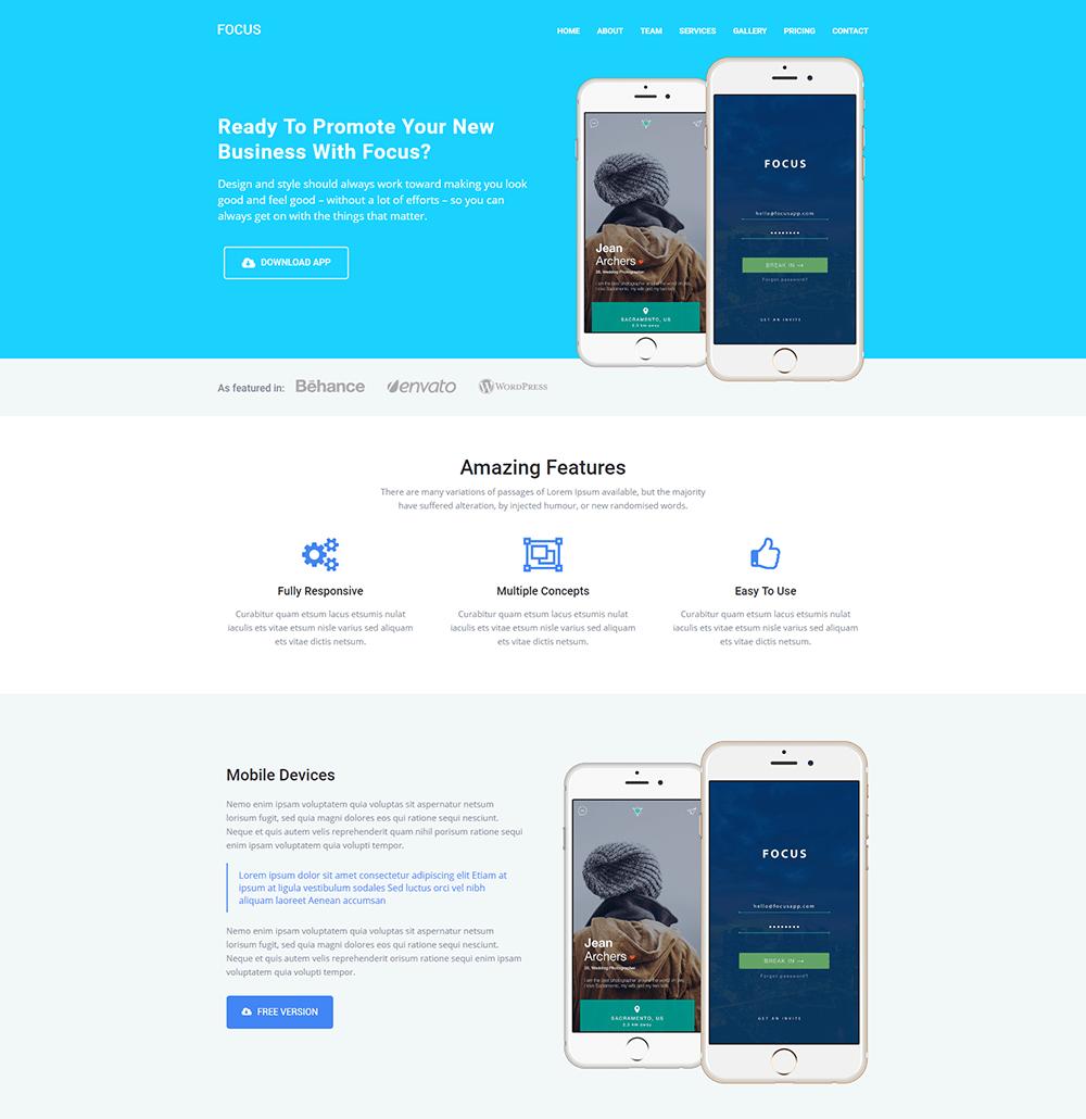 Focus Landing Page WordPress Theme