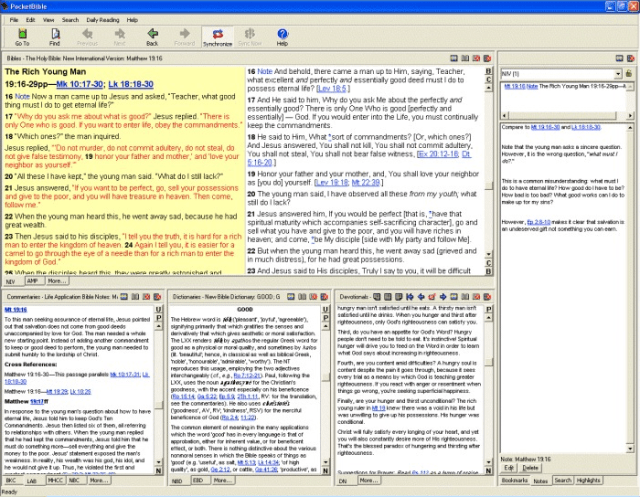 pocketbible for windows