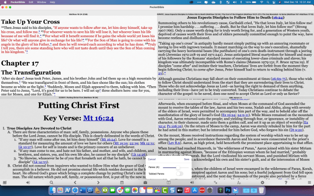 Laridian PocketBible lets you show 4 or more windows something no other iOS Bible apps do. That makes it one of our 7 Best choices.
