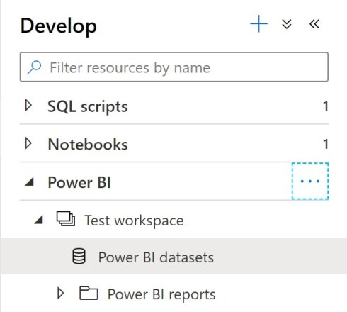 Selecting Power BI dataset