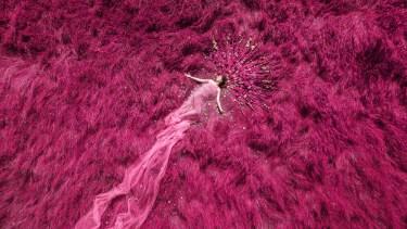 Laura Hollick Magenta Dream
