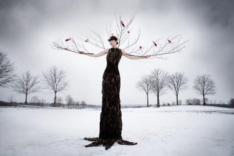 Laura Hollick Winter Tree