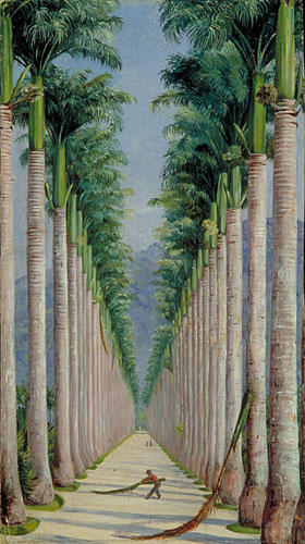 Kew Marianne North Gallery Painting 63 Avenue of Royal Palms at Botafogo Brazil