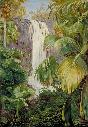 Vintage Wallpaper Animals Kew Marianne North Gallery Painting 479 Waterfall In
