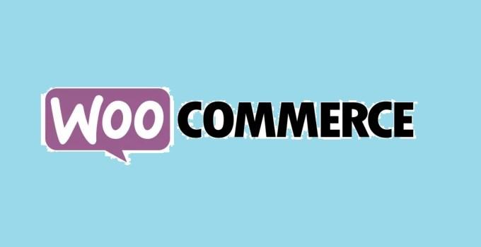 WooCommerce Best Ecommerce WordPress Plugins