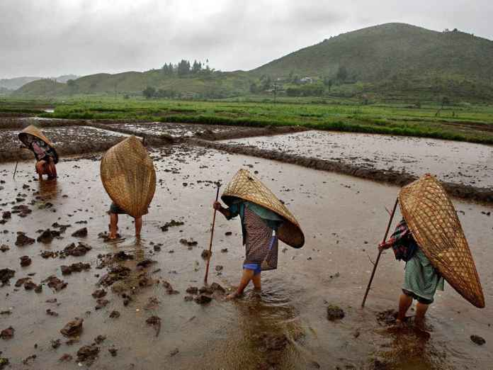 may-records-2nd-highest-rainfall-in -India-since-1901