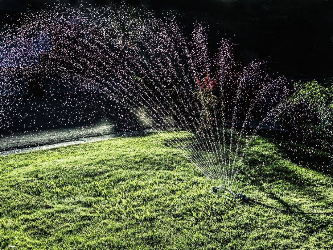 Image result for the importance of deep watering lawn