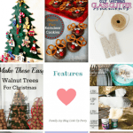 Family Joy Blog Link Party #48