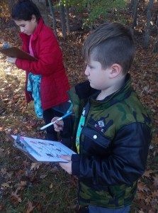 Students on a nature search.