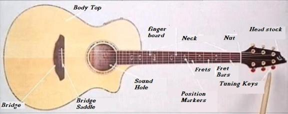 Parts Of A Guitar – Diagram Showing All Guitar Parts Keyboards