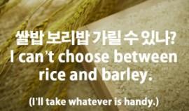 16-cant-choose-rice-barley