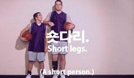70-short-legs