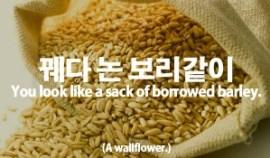 104-borrowed-barley