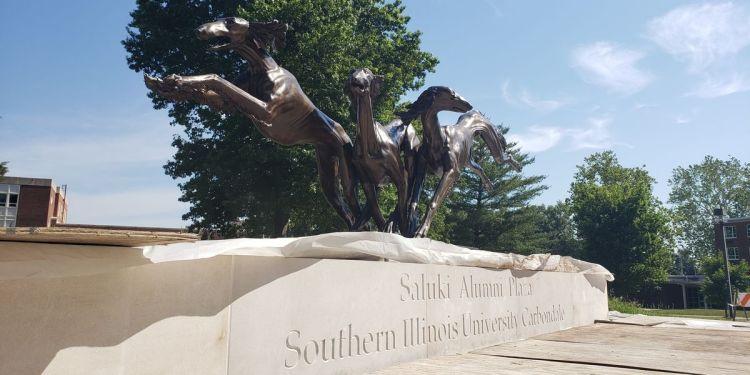 Saluki sculpture representing SIU students installed on campus