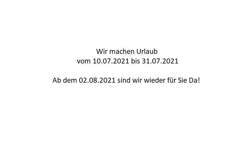 Webasto Standheizung / Reparatur