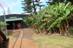 hawaii2012_96
