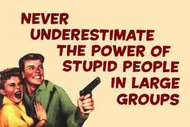 never_underestimate_stupid