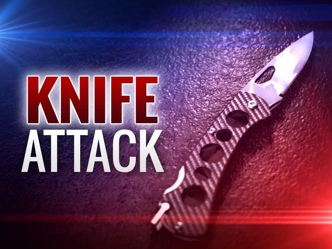 Stabbing Knife_1523814975068.jpg.jpg