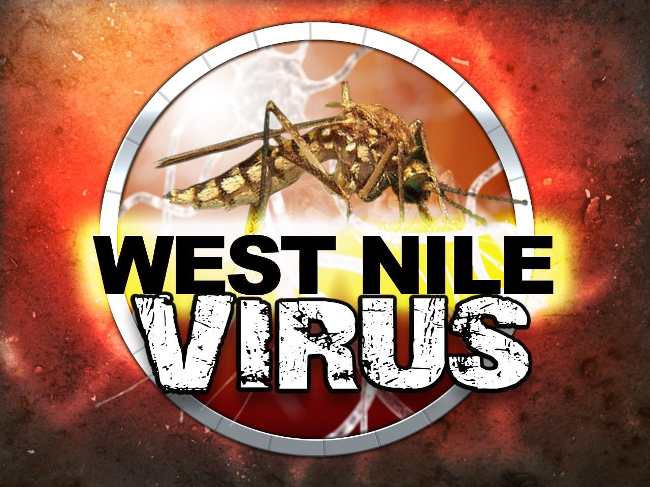 West Nile_1498845901339.jpg