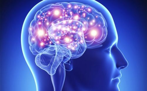 जानिए मस्तिष्क से जुड़ी कुछ दिलचप्स बातें