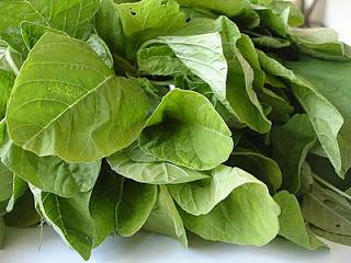 सर्दियों में होम गोर्डन में उगाएं सब्जियां..