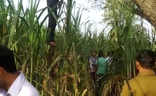 हरिद्वार: शमशान घाट के पास पेड़ से लटकता मिला युवक का शव