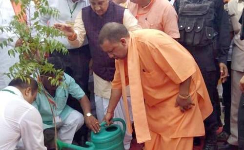 पर्यावरण दिवस पर सीएम योगी ने किया पौधरोपण, ट्वीट कर जनता को दिया संदेश